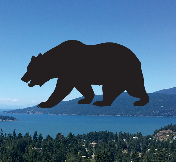 Merveilleux Bear Retractable Screen Decals (5 Count)